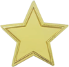The Recognition Star Lapel Pin Page 05 - Recognition Star