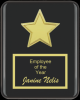 The Recognition Star Plaque Square Rectangle Awards