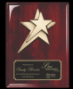 Rosewood Piano Finish plaque w/ star casting Star Awards