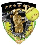 Softball Medal Full Color Medal Awards