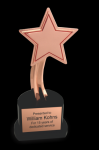 The Recognition Star Star Awards