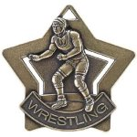 Wrestling Star Wrestling Awards